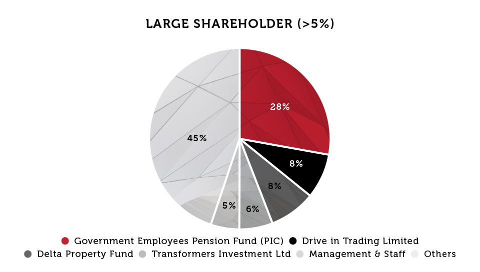 Large Shareholder - Pie Chart